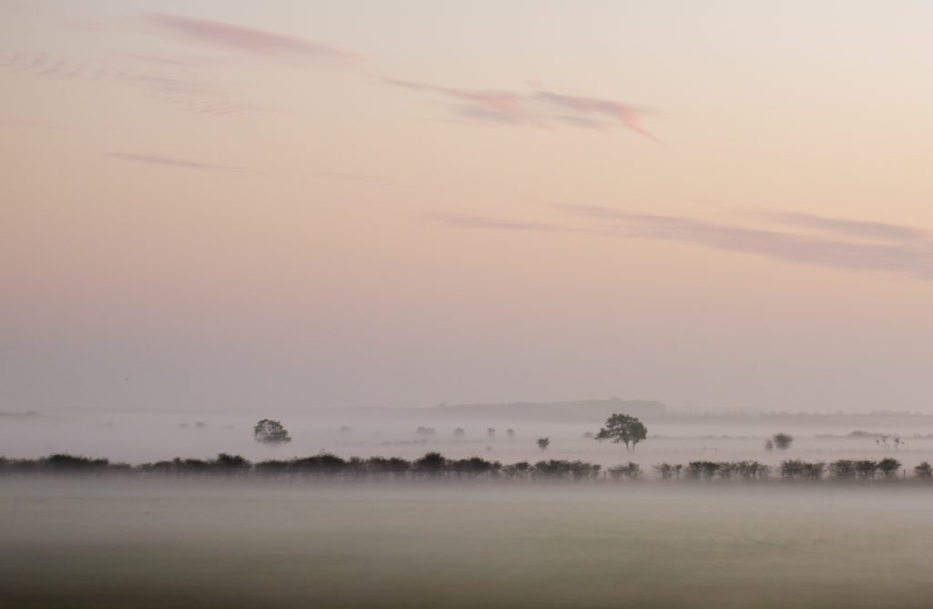 Sunset over misty fields - a picture taken with an old camera and a standard kit lens.