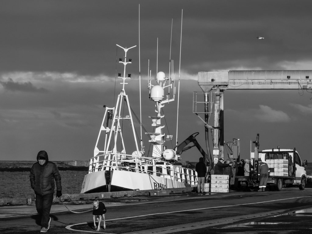 Amble Harbour shot with the Meyer Optik 50 mm legacy lens