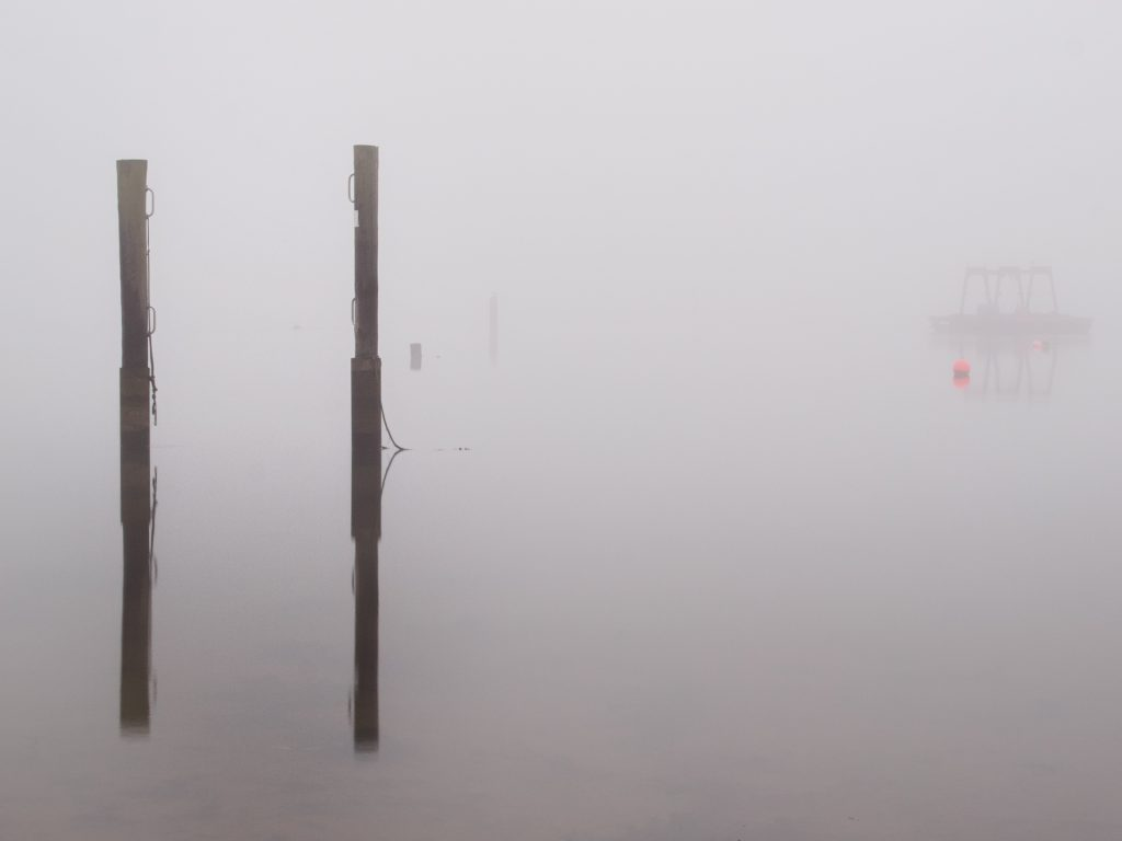 posts in the fog
