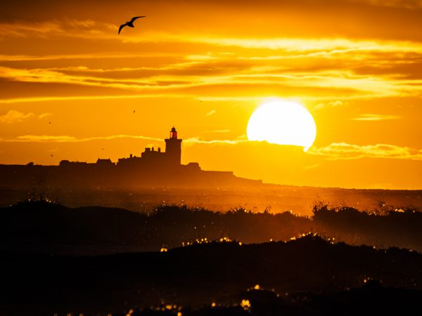 sunrise over Coquet Island
