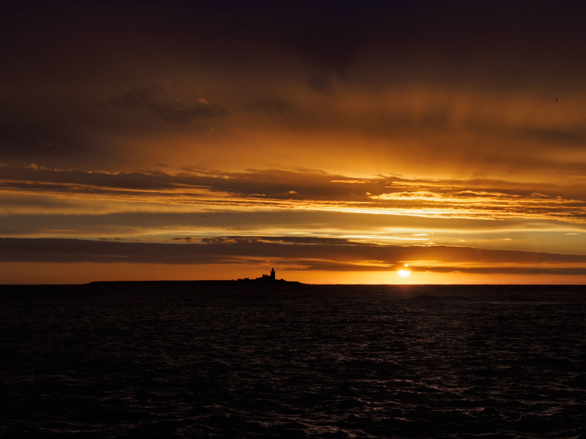 Website Image of the sun rising over Coquet Island